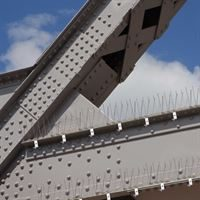 Stainless Steel Bird Spikes - Protecting Ledges from Birds