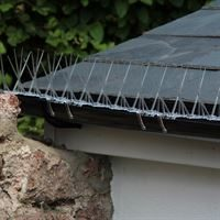 Defender Gutter Spikes are discreet and easy to install