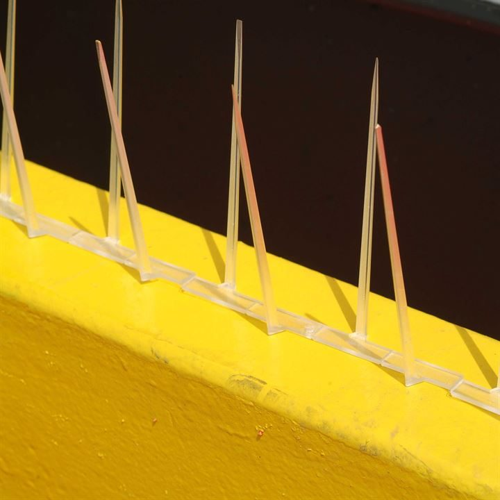 Defender 4™ Narrow Plastic Pigeon Spikes - Protecting a Ledge